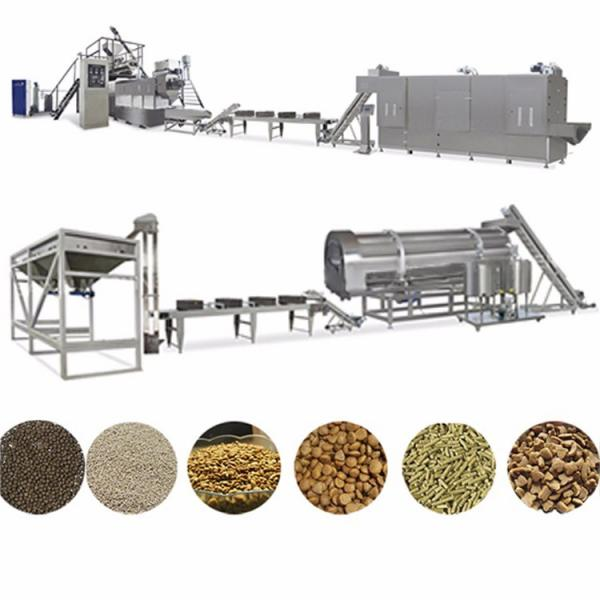 Turnkey Project Fish Feed Pellet Production Plant