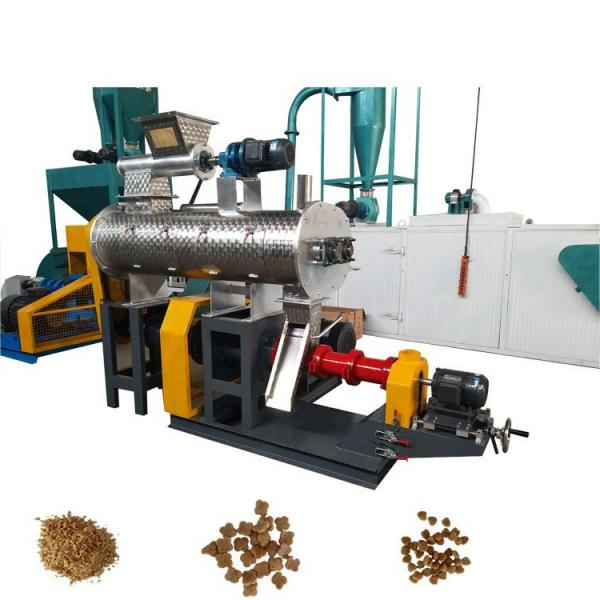 CE Approved Feed Processsing Machine Animal Cattle Chicken Feed Pellet Machine for Sale